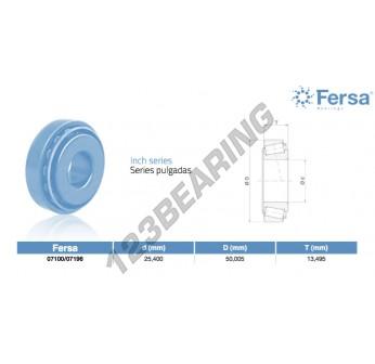 07100-07196-ASFERSA - 25.4x50.01x13.5 mm
