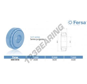 09081-09196-ASFERSA - 20.63x49.23x23.02 mm