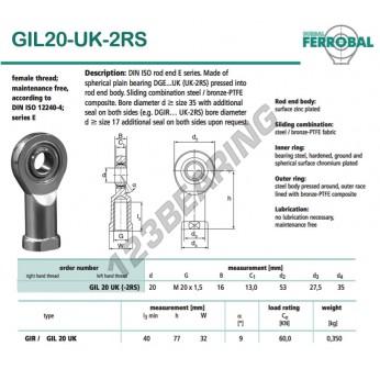 DGIL20-UK-2RS-DURBAL