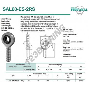 SAL60-ES-2RS-DURBAL